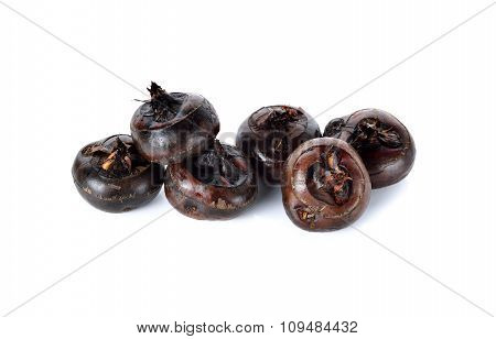 Whole Chinese Water Chestnut Or Waternut On White Background