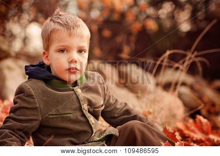 portrait of a two year old blond boy sitting on a grass on a warm autumn day