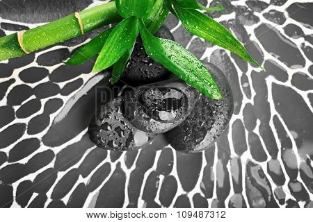 Spa stones and bamboo branch on dark background