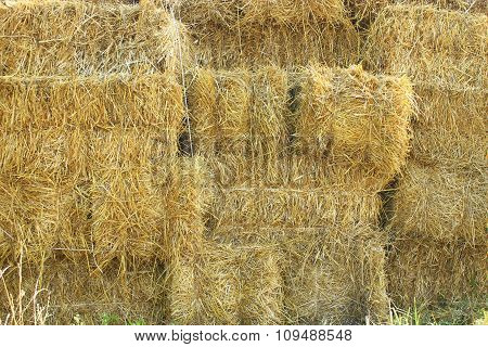 Straw Stacked In Bales