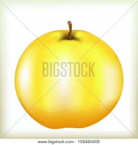 apple of yellow