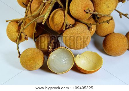 Longan Thai fruit on the branch