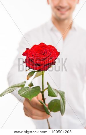 Closeup Photo Of A Romantic Handsome Man With A Red Rose