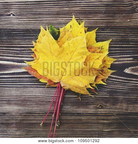 Autumn Leaves on dark wooden background. Autumn background with copy space.