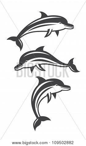 vector dolphin set