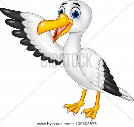Cartoon funny seagull presenting isolated on white background