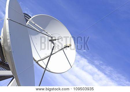Satellite dish and antenna
