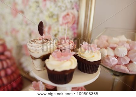 Delicious Cupcakes On Stand At Candy Bar