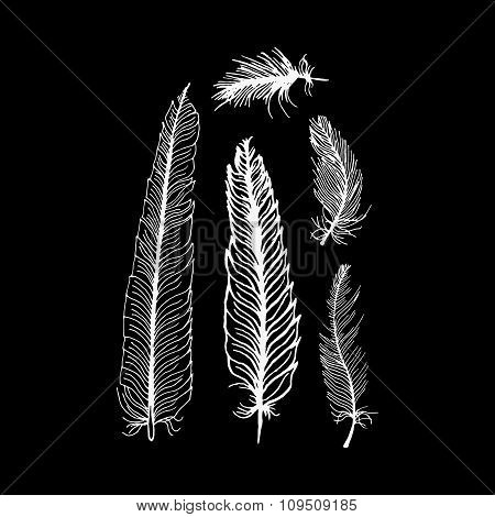hand draw set of feathers on a black background