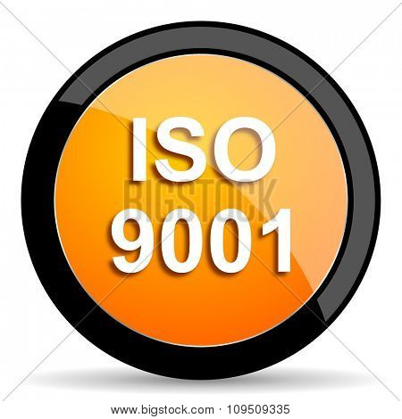 iso 9001 orange icon