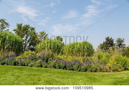 Flowers And Trees On Landscaped Garden Hill