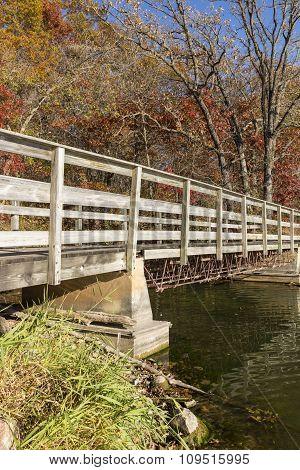 Trail Bridge In Autumn