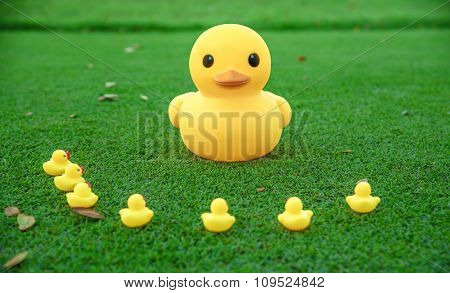 Gathering, Meeting Concept . Big Yellow Duck And The Group  Meeting Together For Explain .