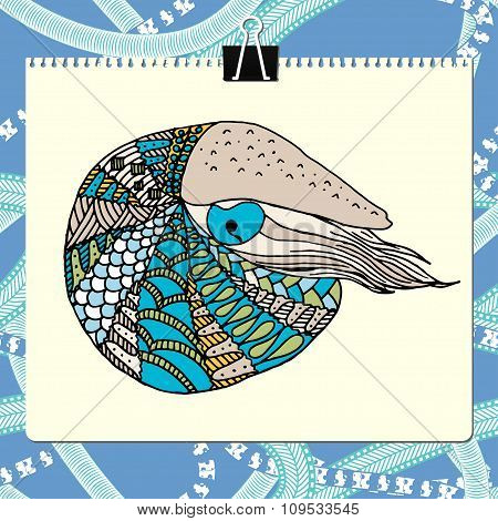 Clipboard and sheet of paper with colored zentangle nautilus vector illustration. Includes abstract
