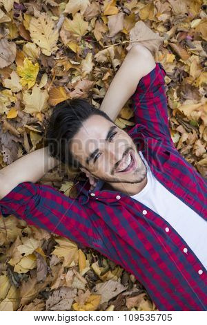 Above shot of a man laying on leaves on autumn