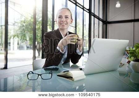 Businesswoman Laptop Technology Strategy Planning Working Concept