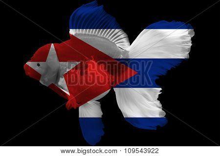 Flag of Cuba on goldfish