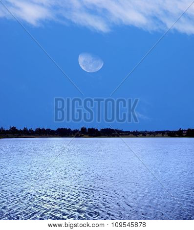 Forest Lake And Moon
