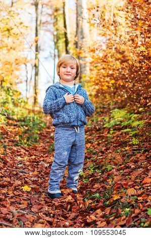 Autumn portrait of a cute little boy in forest