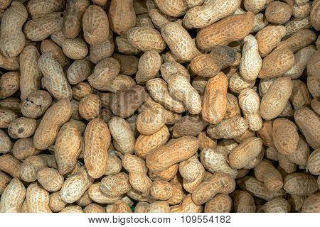 Roasted Peanuts Macro Background