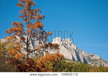 Crimean autumn