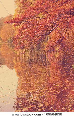 Autumn At Pond