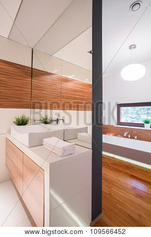 Luxurious Bathroom In Rich House