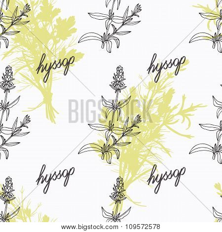 Hand drawn hyssop branch, flowers and handwritten sign. Spicy herbs seamless pattern. Doodle kitchen