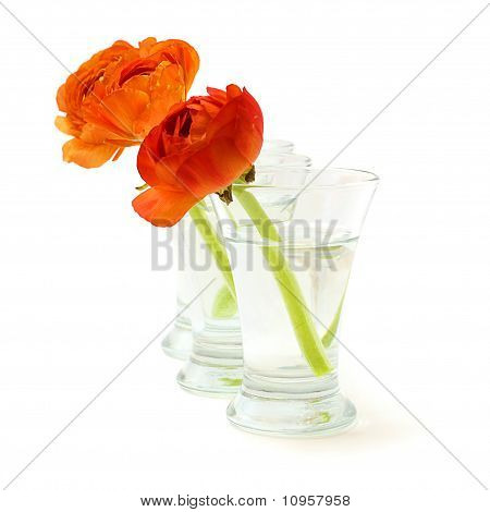 Vase With Orange Flowers Isolated On White Background