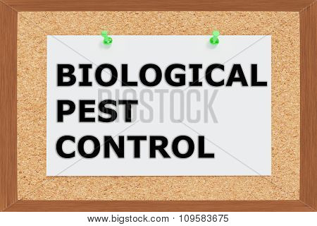 Biological Pest Control  Concept
