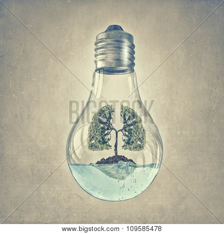 Glass lightbulb with green tree growing inside