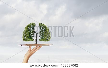Environmental concept with hand hold tray with green tree