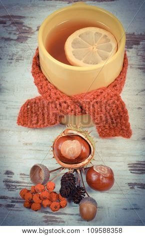 Vintage Photo, Cup Of Tea With Lemon Wrapped Woolen Scarf