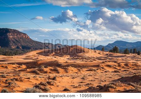 Dunes in the mountains