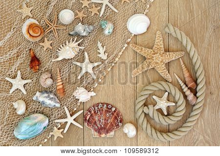 Sea shell abstract background with fishing net and rope on old oak wood.