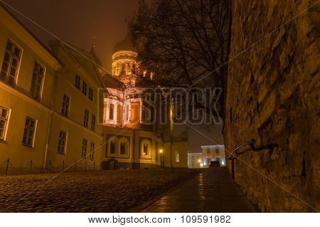 Night View On Illuminated Alexander Nevsky Cathedral