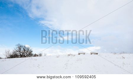 Bench In White Landscape