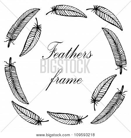 delicate decorative hand-painted frame with feathers vector illustration