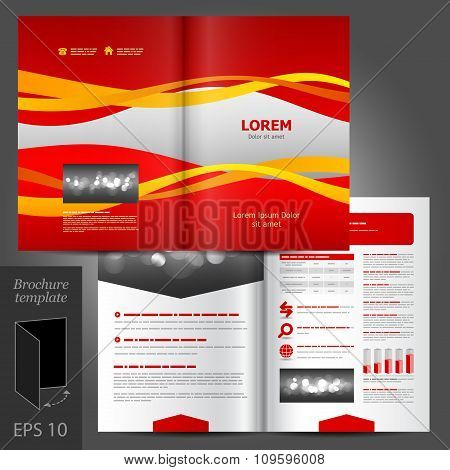 Brochure Template Design With Color Stripes