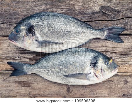 Two Dorado Fishes On The Wooden Background