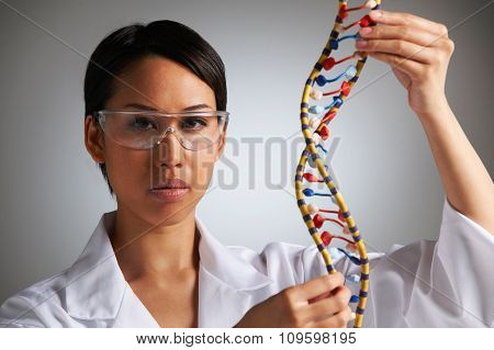Female Scientist Studying Molecular Model In Shape Of Helix