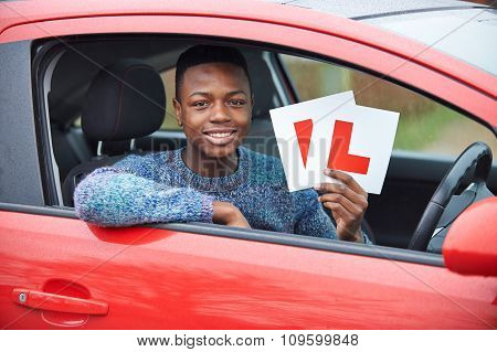 Teenage Boy Passing Driving Exam