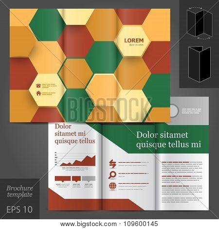 Brochure Template Design With Honeycomb