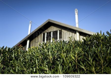 Hedge And Wooden House