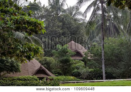 the cottages of the jungle