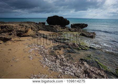 Seashore Landscape, Zakinthos, Greece