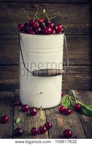 Fresh Cherries In Enamel Can