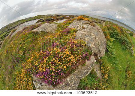 Fisheye Ireland  Landscape