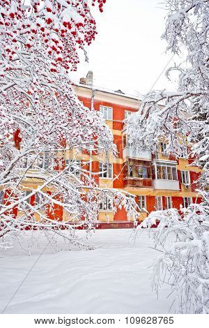 Apartment Condominiums In Winter With Covered Snow Trees