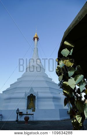 Golden Leaves Of Bodhi Tree And White Buddhist Pagoda Monument
